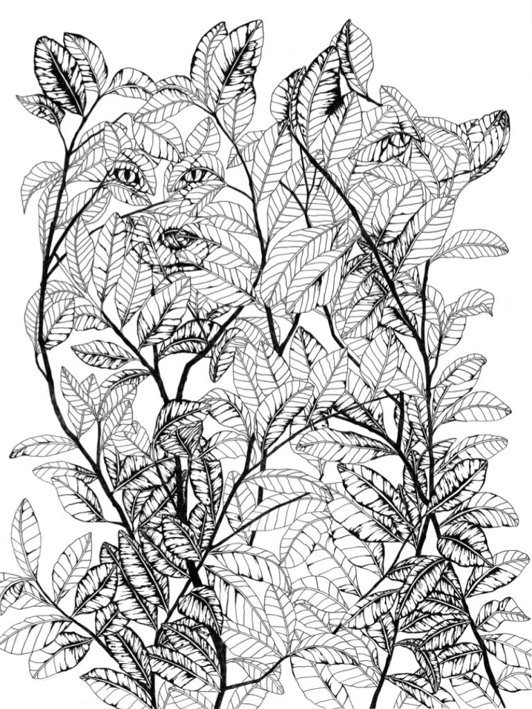 Wolf GZV