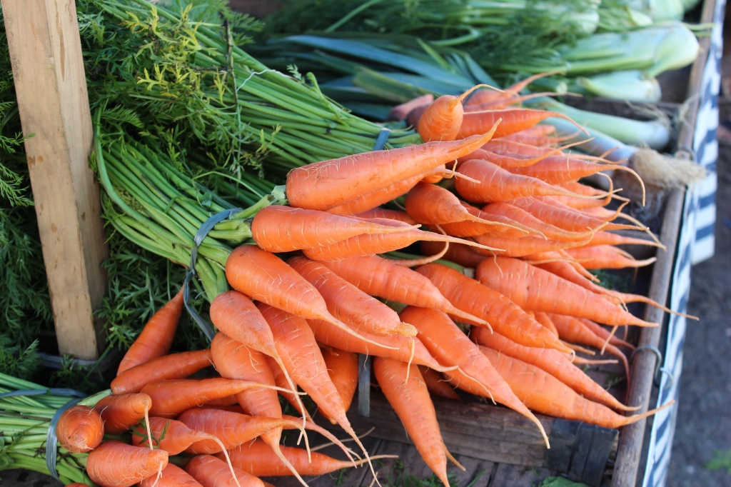 Delicious carrots just waiting to be chopped and served.